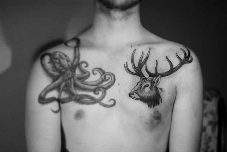 Deer-Lukas.jpg